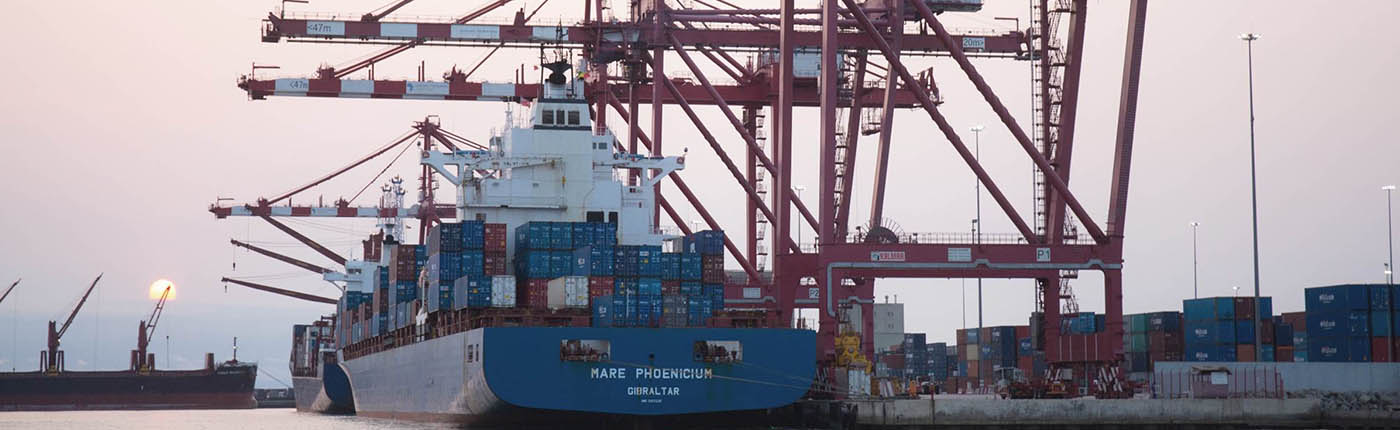 Bolloré Ports: International shipping and port expertises